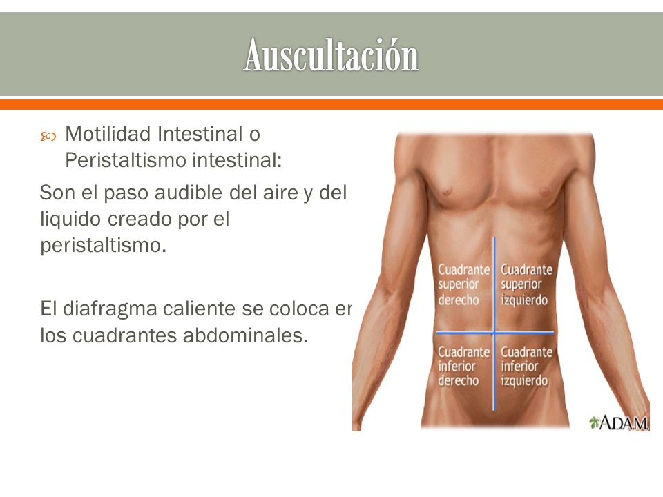 Auscultación Motilidad Intestinal o Peristaltismo intestinal: