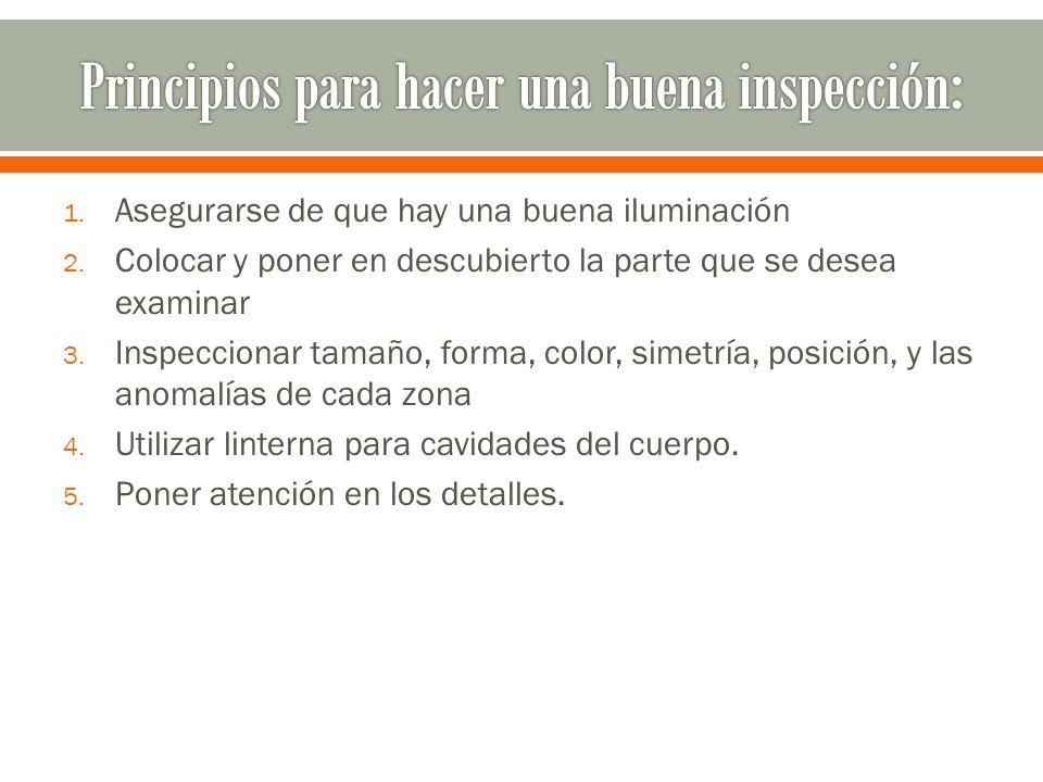 Principios para hacer una buena inspección: