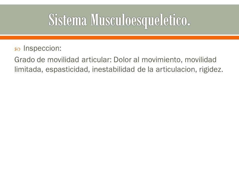 Sistema Musculoesqueletico.