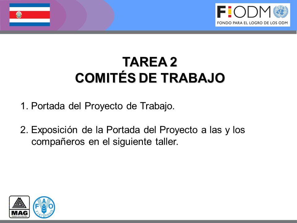 TAREA 2 COMITÉS DE TRABAJO