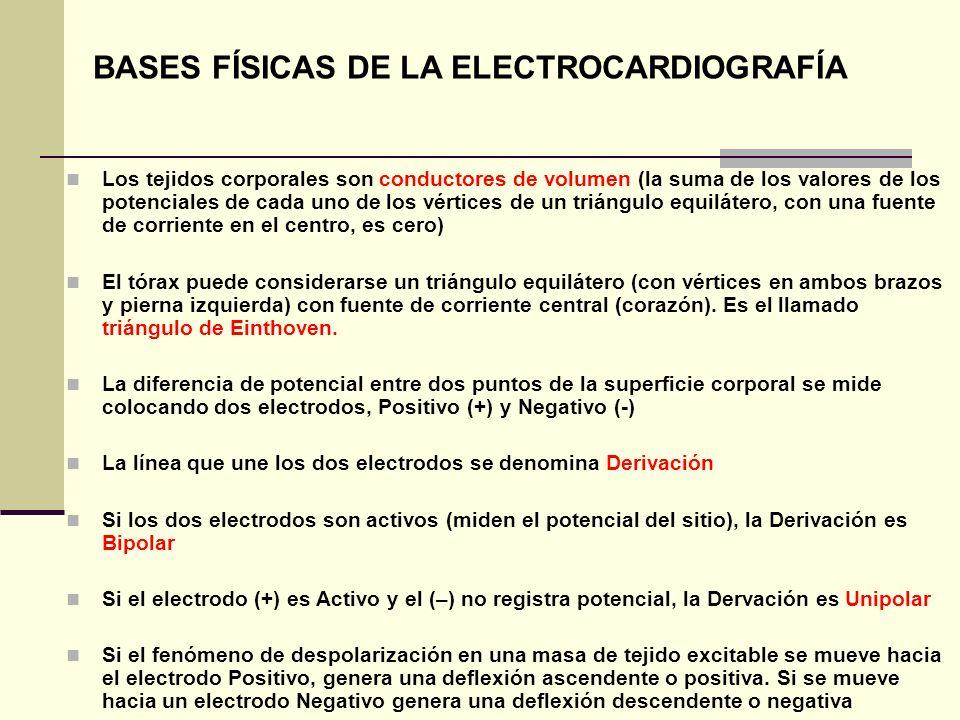 BASES FÍSICAS DE LA ELECTROCARDIOGRAFÍA