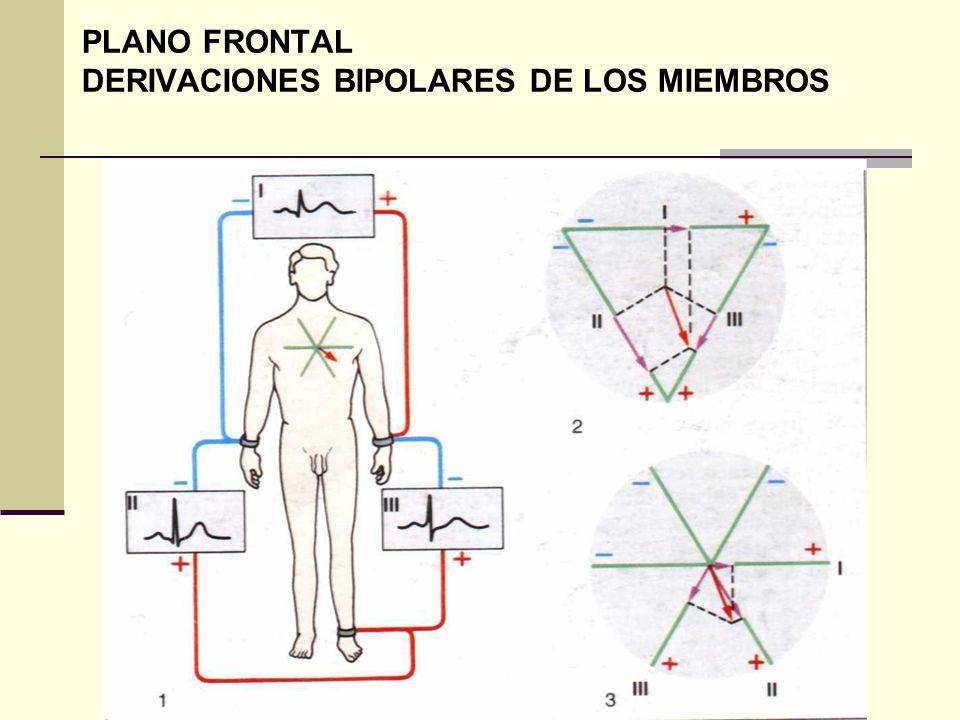 PLANO FRONTAL DERIVACIONES BIPOLARES DE LOS MIEMBROS