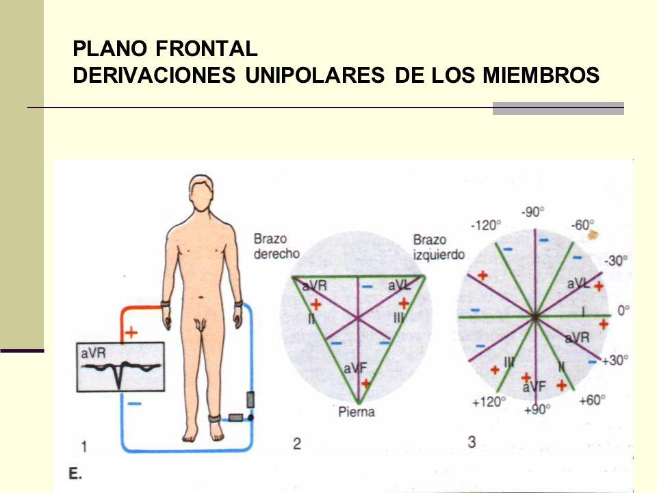 PLANO FRONTAL DERIVACIONES UNIPOLARES DE LOS MIEMBROS
