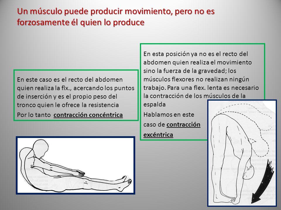 Un músculo puede producir movimiento, pero no es forzosamente él quien lo produce