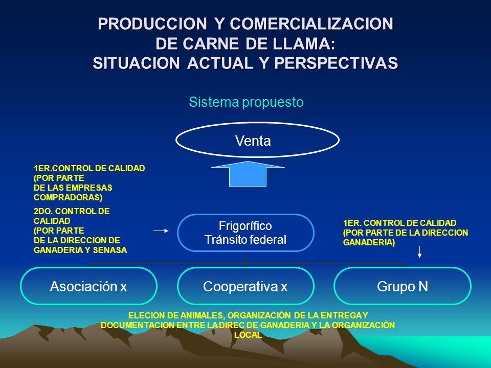 PRODUCCION Y COMERCIALIZACION DE CARNE DE LLAMA: SITUACION ACTUAL Y PERSPECTIVAS