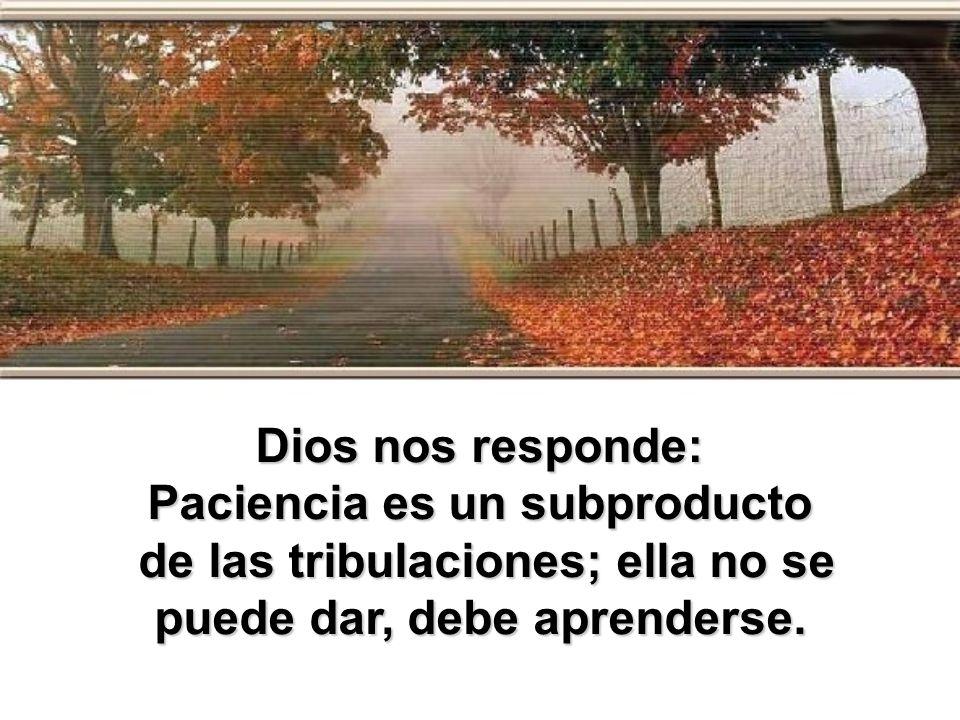 Dios nos responde: Paciencia es un subproducto