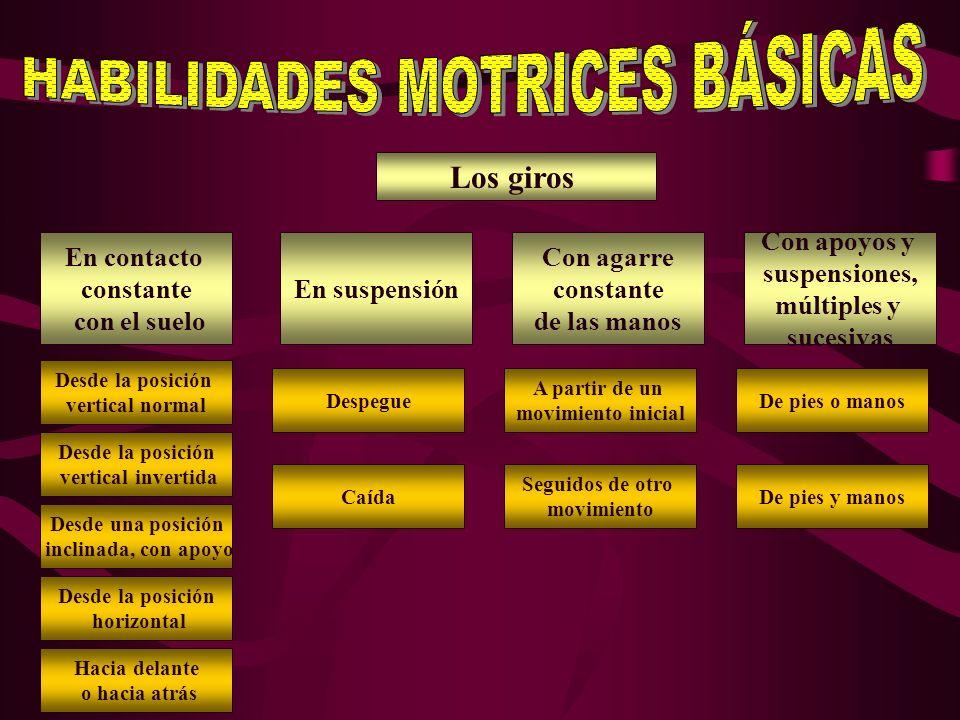 HABILIDADES MOTRICES BÁSICAS