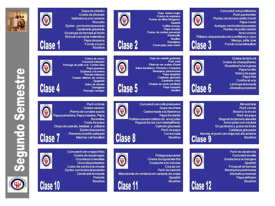 Clase 1 Clase 2 Clase 3 Clase 4 Clase 5 Clase 6 Segundo Semestre