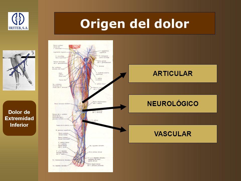 Origen del dolor ARTICULAR NEUROLÓGICO VASCULAR