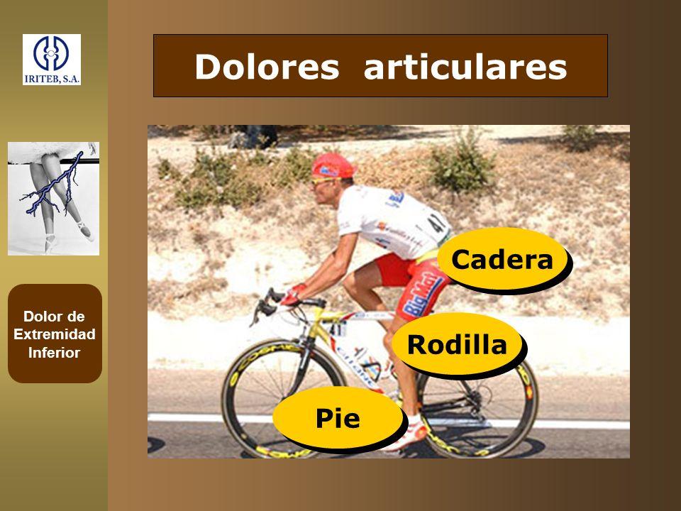 Dolores articulares Cadera Rodilla Pie