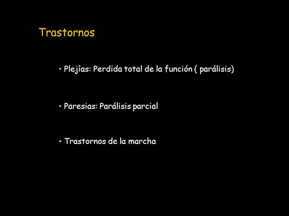 Trastornos Plejías: Perdida total de la función ( parálisis)