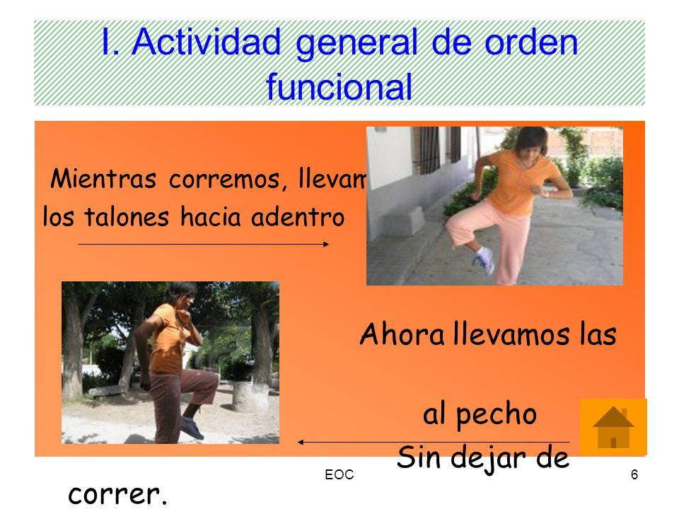 I. Actividad general de orden funcional