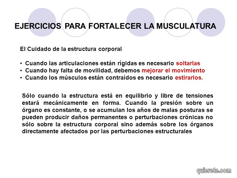 EJERCICIOS PARA FORTALECER LA MUSCULATURA