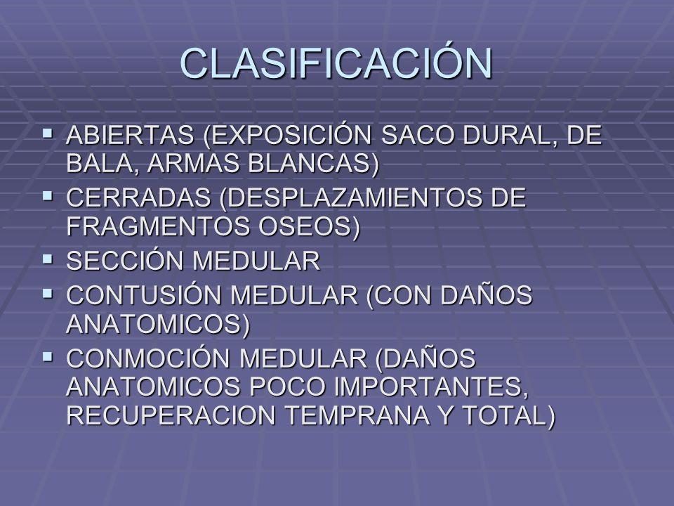 CLASIFICACIÓN ABIERTAS (EXPOSICIÓN SACO DURAL, DE BALA, ARMAS BLANCAS)