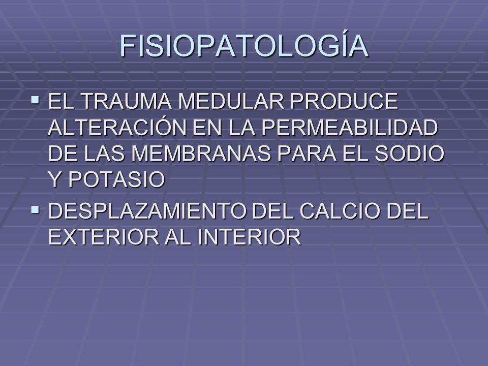 FISIOPATOLOGÍA EL TRAUMA MEDULAR PRODUCE ALTERACIÓN EN LA PERMEABILIDAD DE LAS MEMBRANAS PARA EL SODIO Y POTASIO.