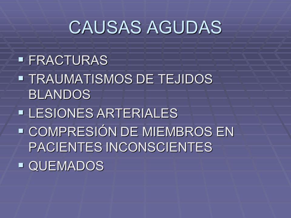 CAUSAS AGUDAS FRACTURAS TRAUMATISMOS DE TEJIDOS BLANDOS