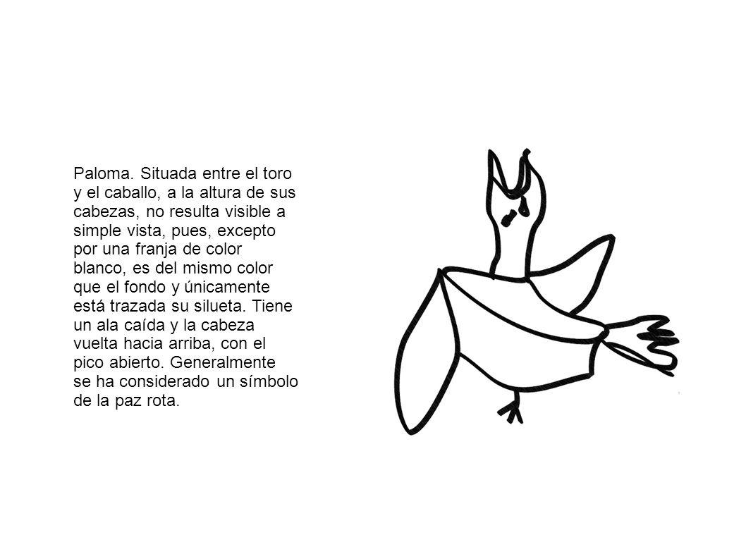 Paloma.