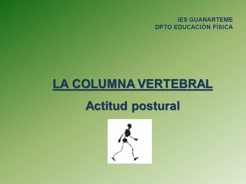 LA COLUMNA VERTEBRAL Actitud postural