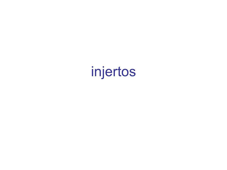 injertos