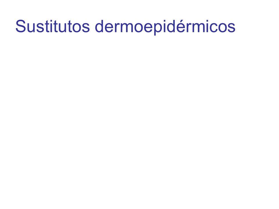 Sustitutos dermoepidérmicos
