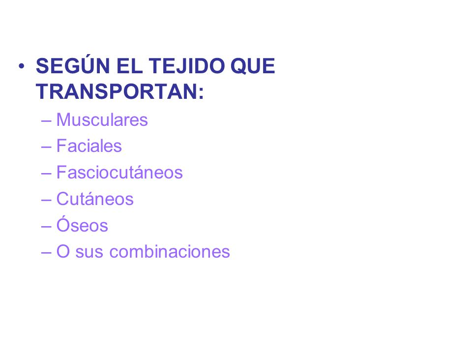 SEGÚN EL TEJIDO QUE TRANSPORTAN: