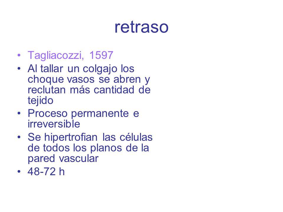 retraso Tagliacozzi, 1597. Al tallar un colgajo los choque vasos se abren y reclutan más cantidad de tejido.