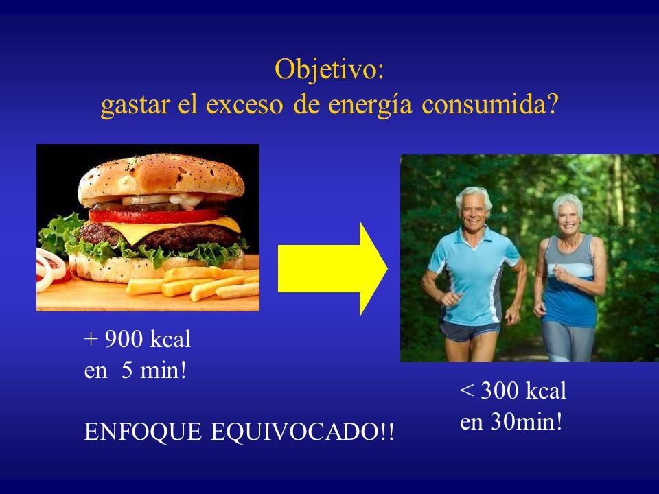 Objetivo: gastar el exceso de energía consumida