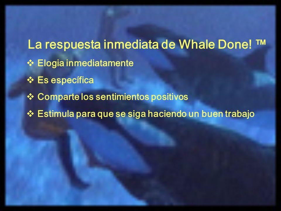 La respuesta inmediata de Whale Done! ™