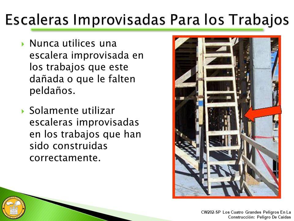 Escaleras Improvisadas Para los Trabajos