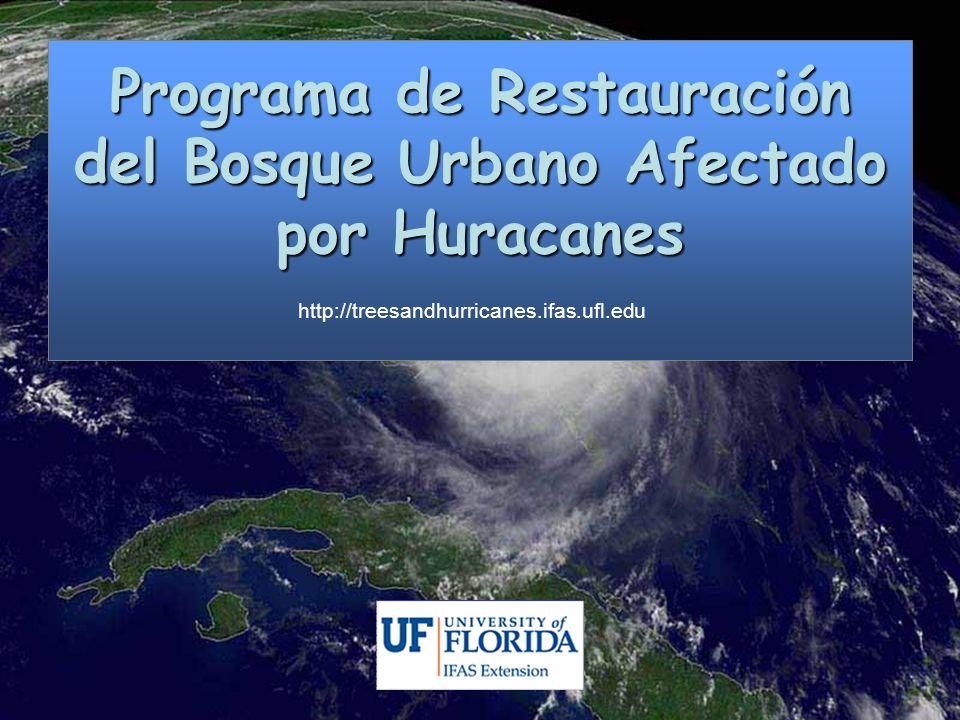 Programa de Restauración del Bosque Urbano Afectado por Huracanes