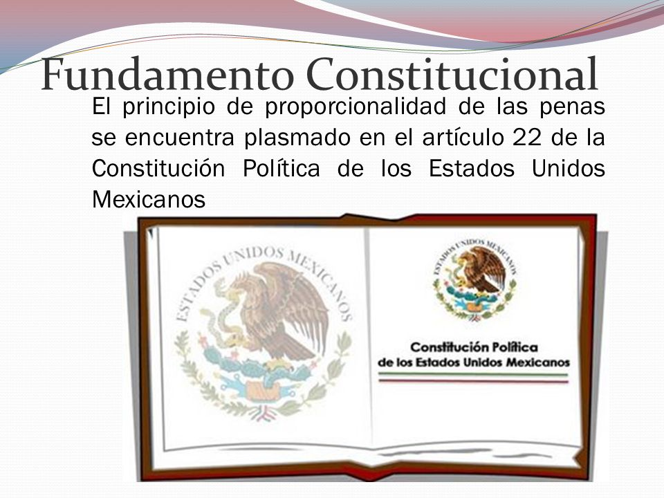 Fundamento Constitucional