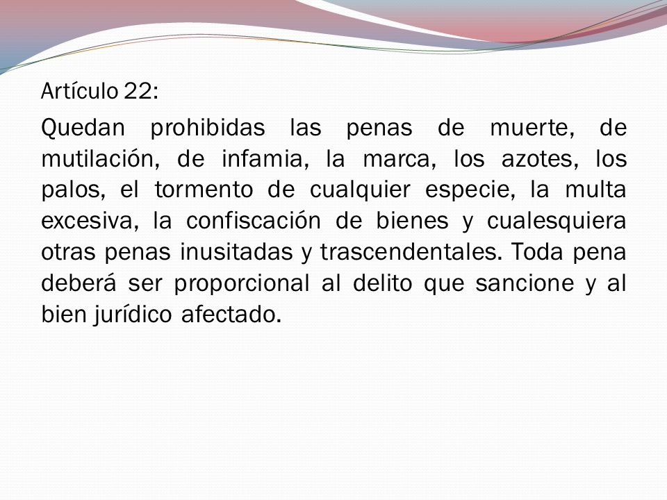 Artículo 22: