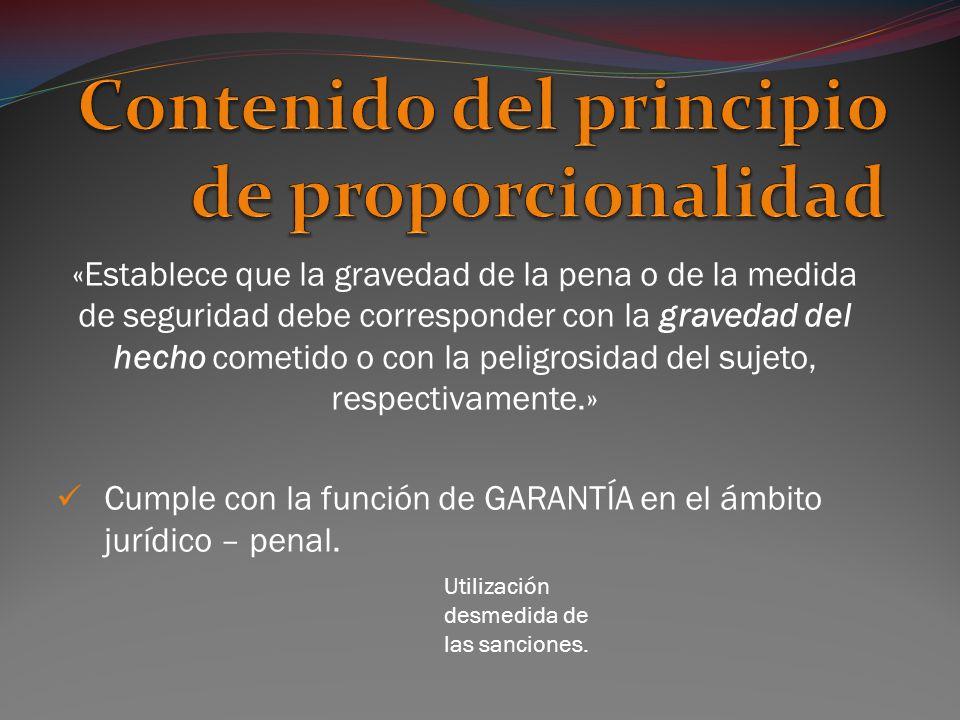 Contenido del principio de proporcionalidad