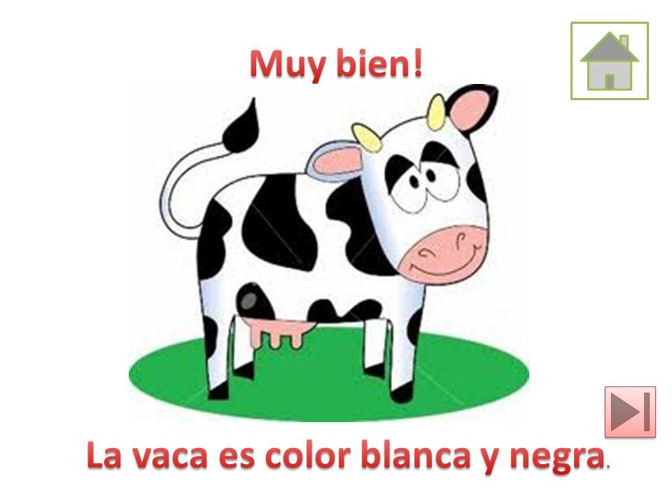 Muy bien! La vaca es color blanca y negra.