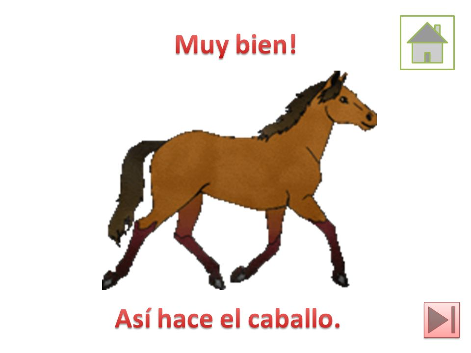 Muy bien! Así hace el caballo.