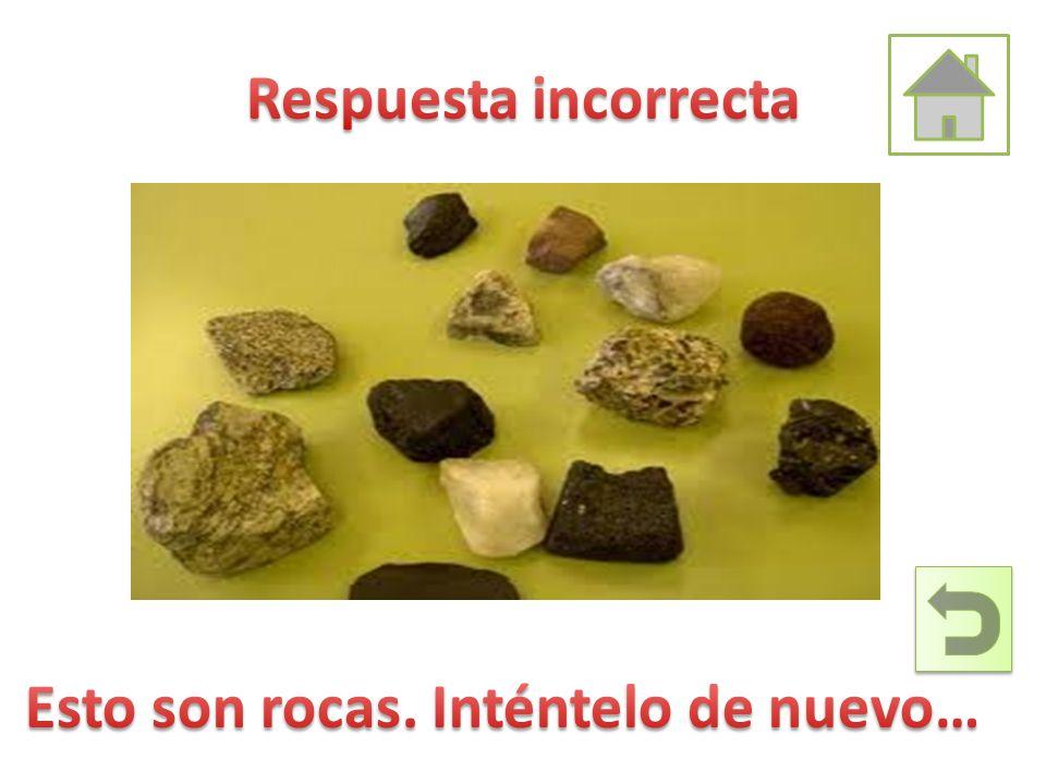Respuesta incorrecta Esto son rocas. Inténtelo de nuevo…