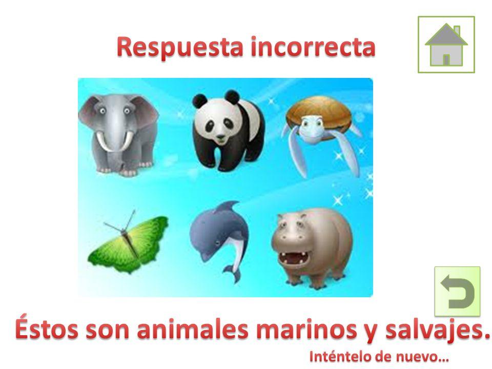 Éstos son animales marinos y salvajes.