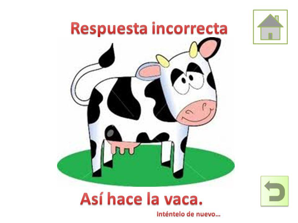 Respuesta incorrecta Así hace la vaca. Inténtelo de nuevo…
