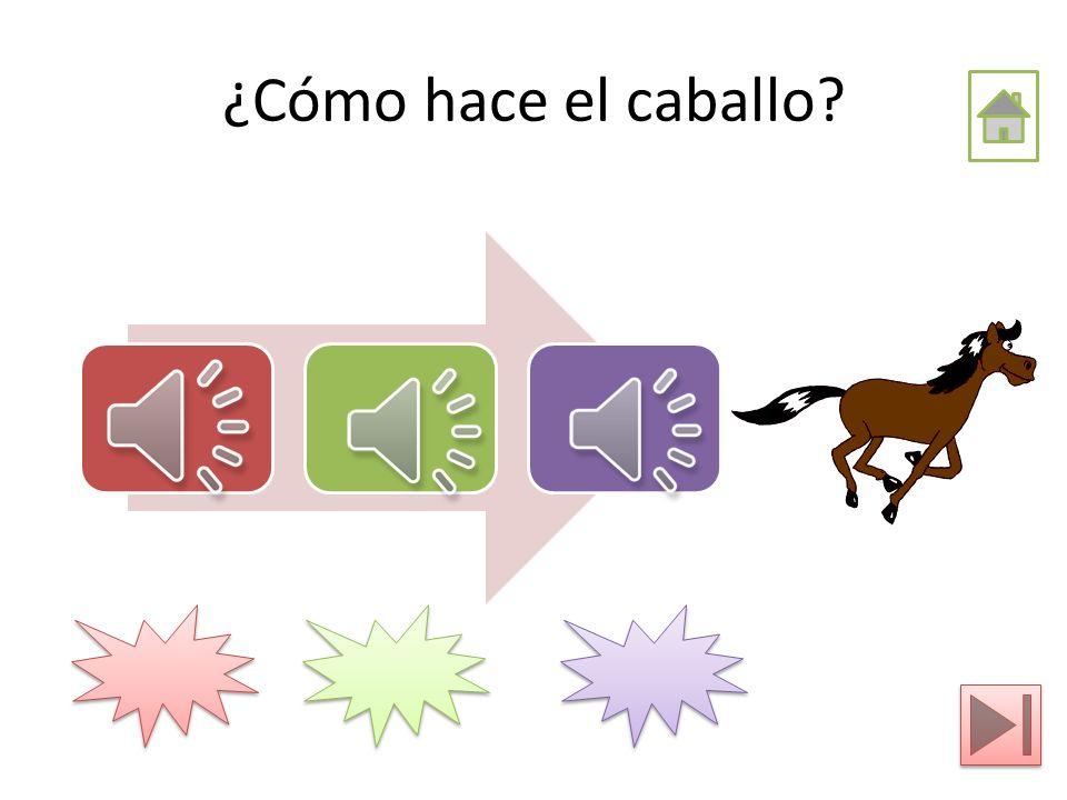 ¿Cómo hace el caballo