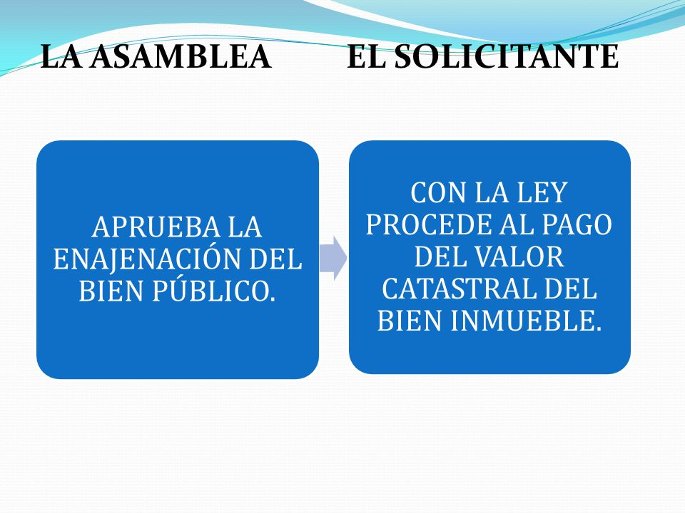 LA ASAMBLEA EL SOLICITANTE