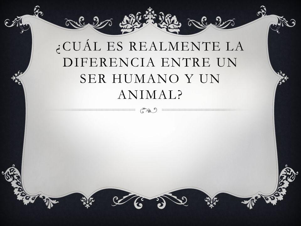 ¿Cuál es realmente la diferencia entre un ser humano y un animal