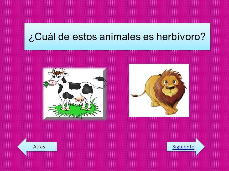 ¿Cuál de estos animales es herbívoro