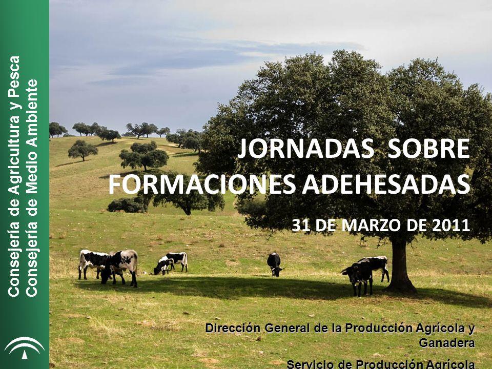 JORNADAS SOBRE FORMACIONES ADEHESADAS