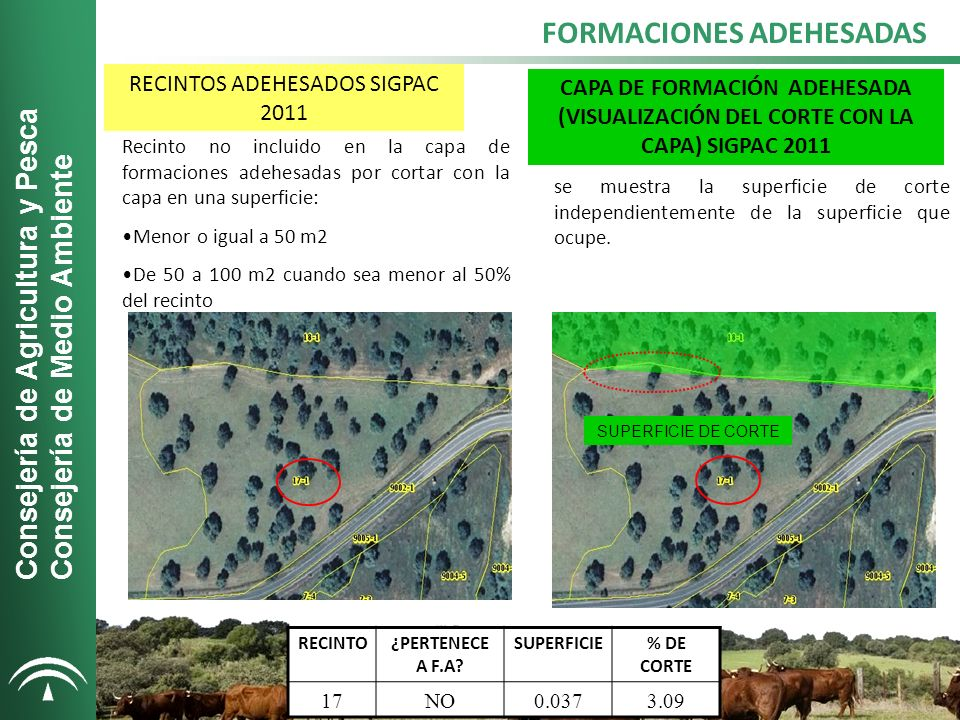 RECINTOS ADEHESADOS SIGPAC 2011