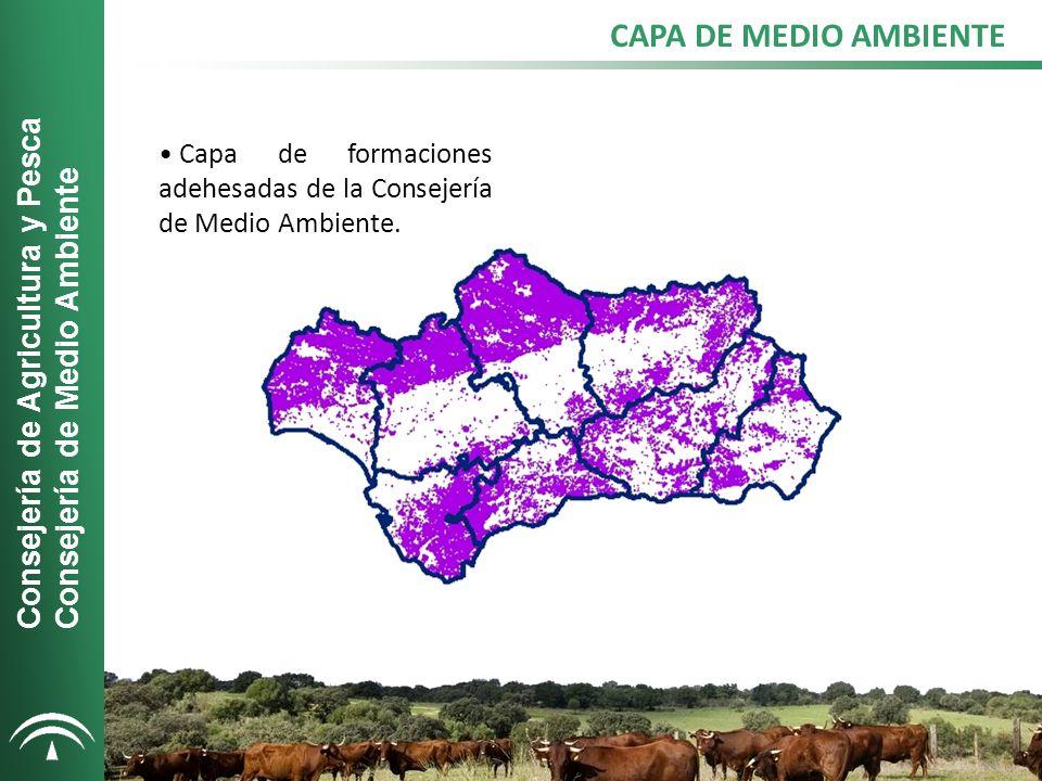 CAPA DE MEDIO AMBIENTE Consejería de Agricultura y Pesca