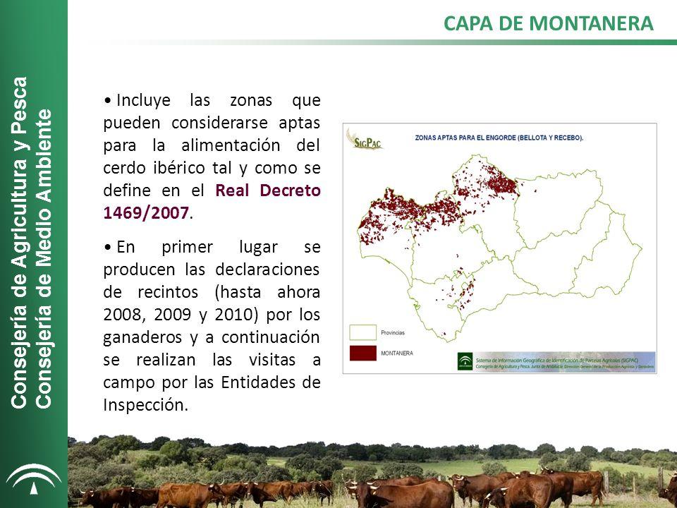 CAPA DE MONTANERA Consejería de Agricultura y Pesca