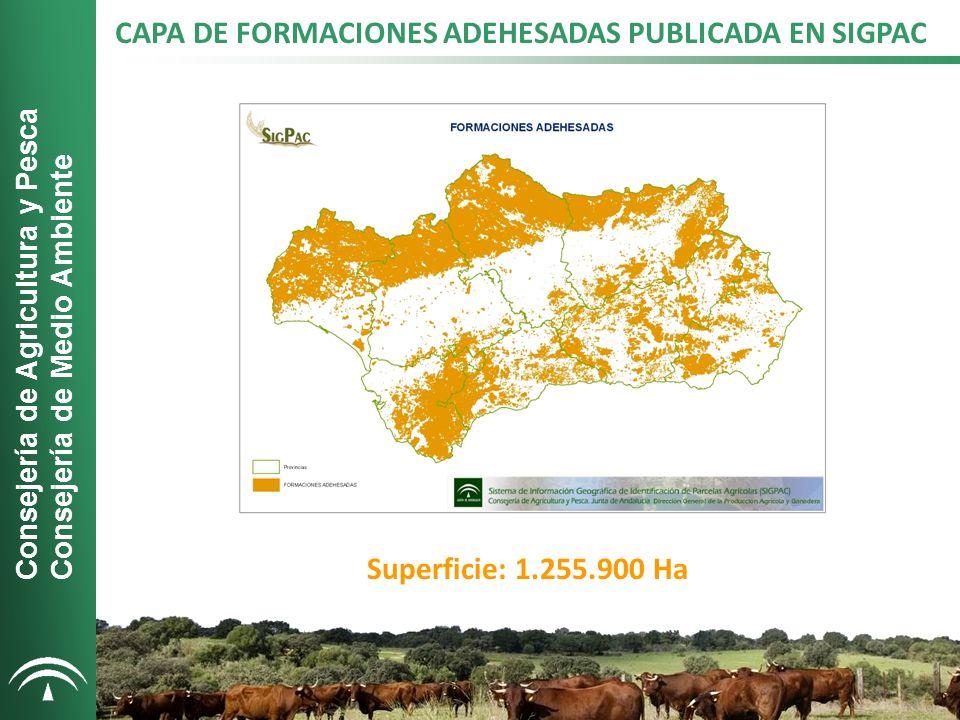 CAPA DE FORMACIONES ADEHESADAS PUBLICADA EN SIGPAC