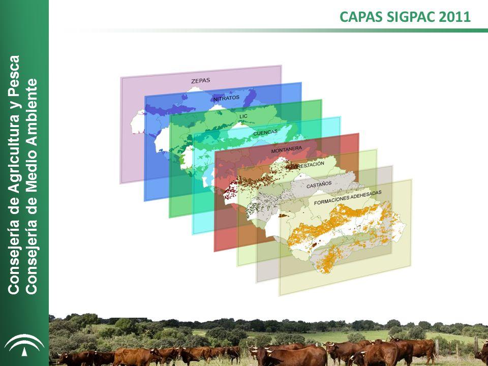 CAPAS SIGPAC 2011 Consejería de Agricultura y Pesca