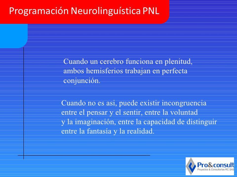 Programación Neurolinguística PNL