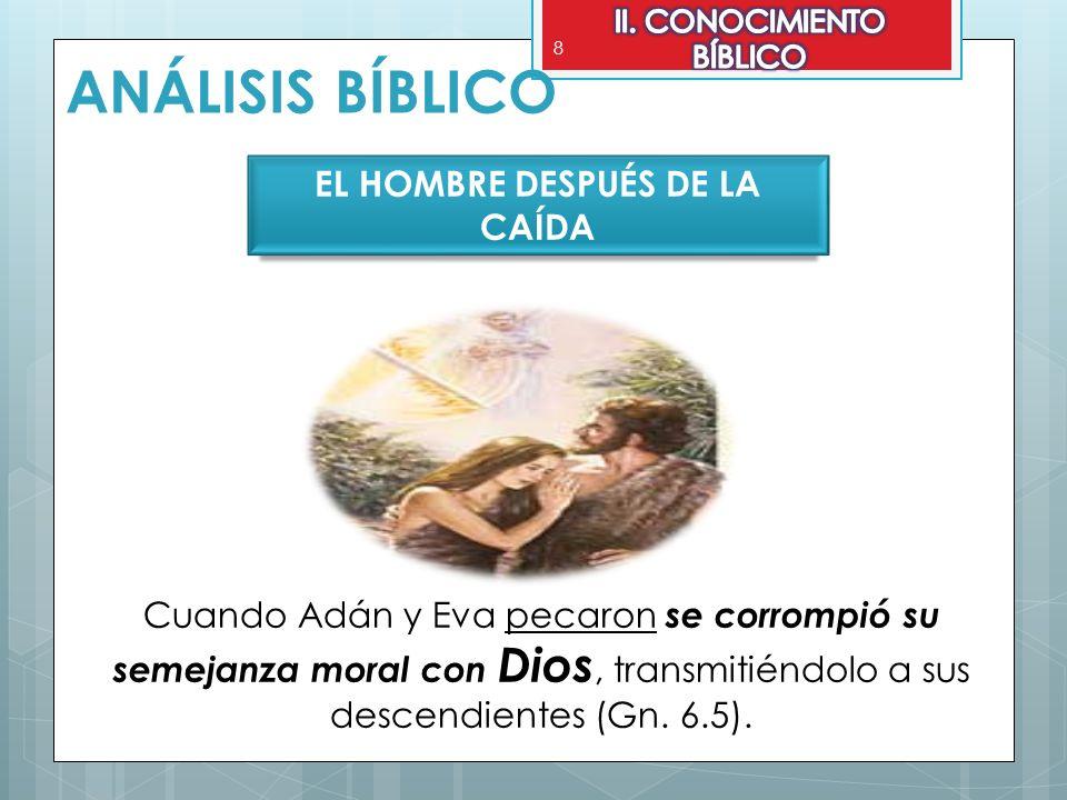 EL HOMBRE DESPUÉS DE LA CAÍDA